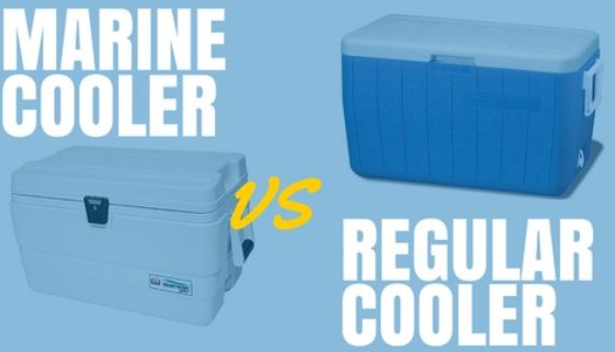 Marine Cooler vs Regular Cooler