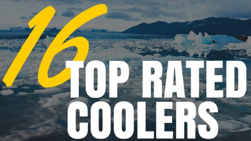 16 Top Rated Coolers Which Is The Best Ice Chest