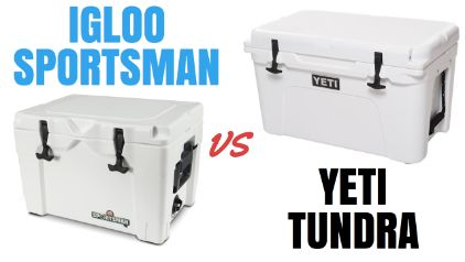 Igloo Sportsman Vs Yeti Which Cooler Is The Best Buy