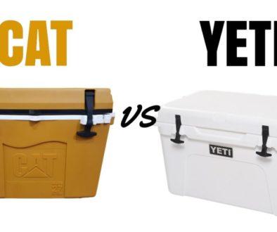 CAT vs Yeti