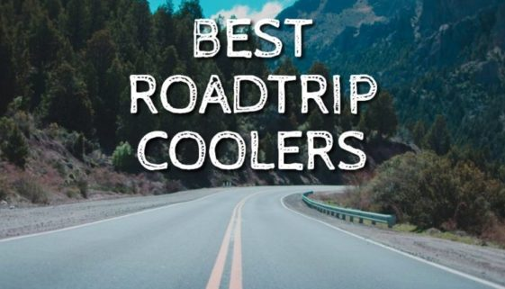 Best Roadtrip Coolers