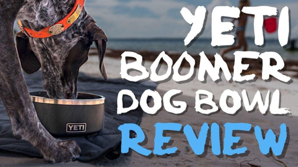 Yeti Boomer Dog Bowl Review