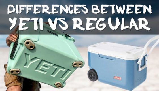 Differences Between Yeti and Regular Coolers
