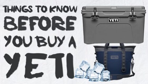 Things To Know Before You Buy a Yeti
