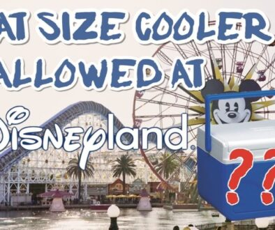 what-size-cooler-is-allowed-at-disneyland