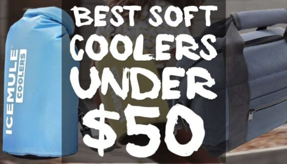 best-coolers-under-50