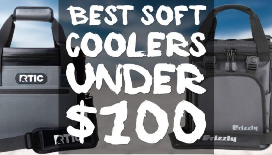 best-soft-coolers-under-100
