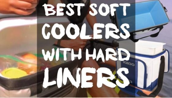 best-soft-coolers-with-hard-liners