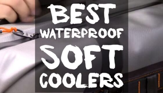 best-waterproof-soft-coolers