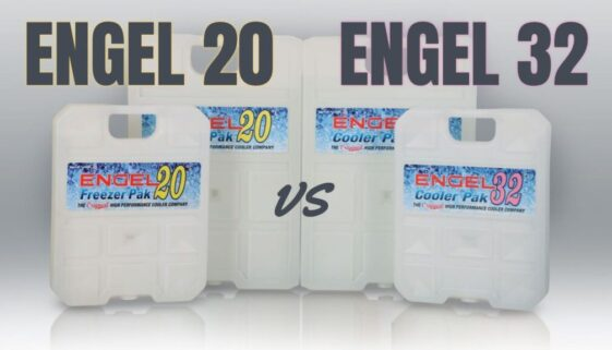 Engel 20 vs 32 Ice Packs: What's The Difference and Which is Better?
