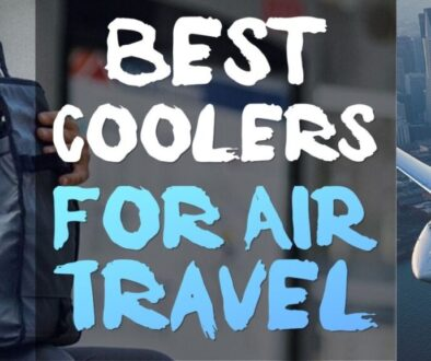 best-coolers-for-air-travel