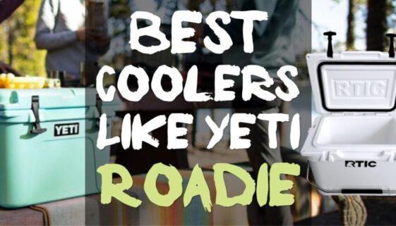 Best Coolers Like Yeti Roadie 20-Quart But Cheaper