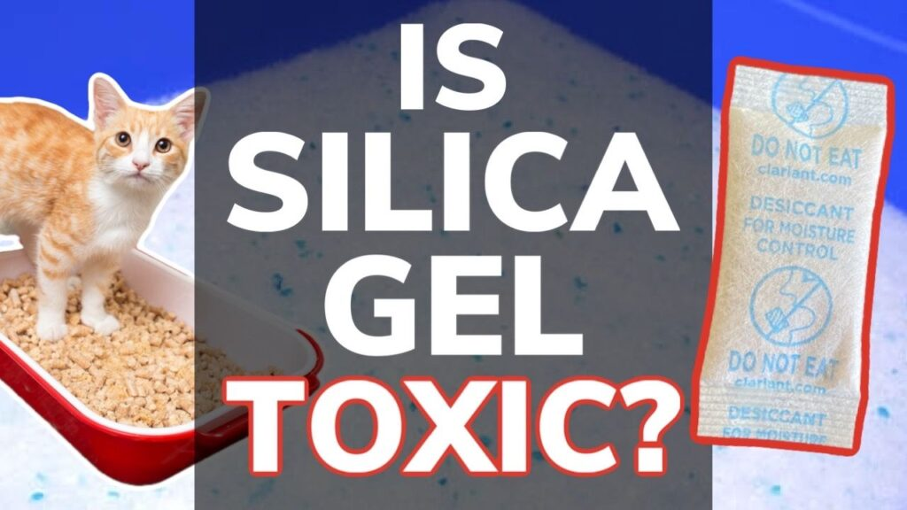 Is Silica Gel Toxic To Cats?