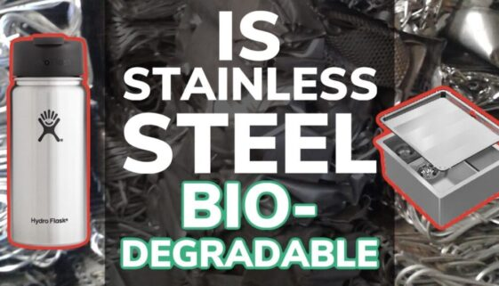 Is Stainless Steel Biodegradable?